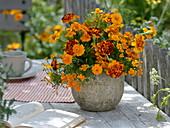Orange-roter Strauß aus Tagetes patula und tenuifolia (Studentenblumen)