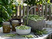 Bohnen einmachen : frisch geerntete und geschnittene Feuerbohnen