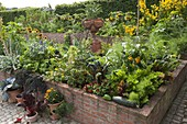 Bauerngarten mit Gemüse und Sommerblumen im Hochbeet