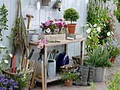 Arbeitstisch mit kleinen Sträußen aus Sommerblumen