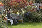 Halbrunde Bank vor herbstlichem Beet mit Arundo donax 'Versicolor'