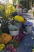 Herbstliches Terrassenbeet mit bepflanzten Töpfen aufgepeppt