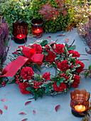 Kranz aus gewundenem Cornus (Hartriegel) dekoriert mit roten Dianthus