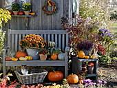 Herbstgestaltung am Gartenhaus