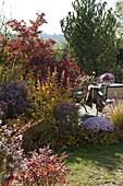 Herbstbeet mit Gehölzen in Herbstfärbung und Stauden