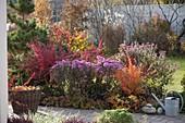 Herbstbeet mit Sträuchern und Stauden