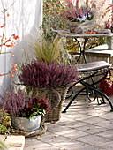 Herbstliche Heide-Terrasse