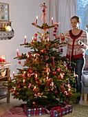 Natürlicher Weihnachtsbaum mit Äpfeln (Malus), Ilex (Stechpalme), Pinus