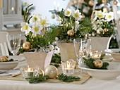 Weihnachtliche Christrosen - Tischdeko