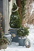Gartenhäuschen im Winter