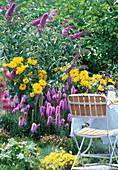 Gartenansicht mit Liatris (Prachtspiere)