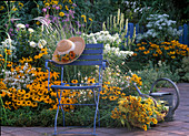 Rudbeckia hirta 'Marmelade', Dahlia 'Kaktus' weiß