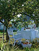 weiße Sitzgarnitur unter Malus (Apfelbaum)