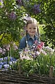 Mädchen pflückt Strauß im Frühlingsgarten, Aquilegia (Akelei), Viola cornuta