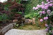 Kleiner Teich im asiatischen Stil mit Buddha-Figur, Trockenmauer und Wasserfall, Rhododendron (Alpenrose), Acer palmatum 'Atropurpureum' (Fächerahorn), Wand bewachsen mit Hedera (Efeu), Farne, Hosta (Funkie)