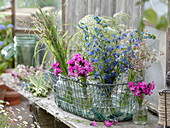 Wiesenblumen im Frühsommer : Dianthus carthusianerum