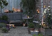 Romantische Abend - Terrasse mit Rosa (Rosen), Rosmarin (Rosmarinus)