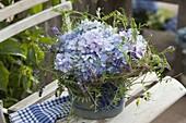 Hydrangea (Hortensien) in Kranzrohling mit Ranken von Vicia cracca