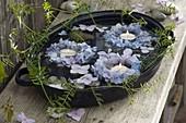 Kleine Kränze aus Hydrangea (Hortensie) und Blüten schwimmen