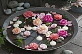 Rosa (Rosen - Blüten) und Schwimmkerzen in breiter Schale mit Wasser