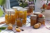 Frisch geerntete Aprikosen verarbeiten