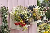 Wandhänger aus Holz gefüllt mit Eberesche (Sorbus), Kamille