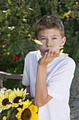 Junge bläst Blütenblätter von Helianthus (Sonnenblume) in die Luft