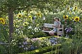 Bauerngarten mit Sommerblumen und Stauden unterm Apfelbaum
