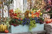 Winterhart bepflanzter Herbstkasten