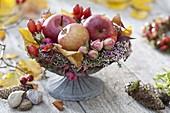 Schale mit Äpfeln (Malus), Rosa (Rosen-Knospen und Hagebutten)
