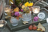 Kleine Herbstdeko in Sahnekännchen und Zuckerdose