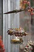 Windlicht dekoriert mit Haselnüssen (Corylus), Rosa (Hagebutten)
