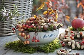 Omas Salatschüssel gefüllt mit Haselnüssen (Corylus), Zieräpfeln