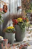 Hohe graue Kübel herbstlich bepflanzt