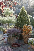 Herbstliches Arrangement auf Terrasse winterfest verpackt