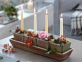 Natürliche Kerzendeko mit Malus (Zieräpfeln), Rosa (Rose, Hagebutten)