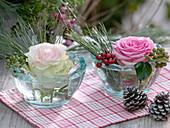 Kleine Glasschalen mit Rosa (Rosen - Blüten), Pinus (Seidenkiefer)