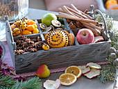 Weihnachtliche Duftkiste : Kumquat und Orangen mit Nelken gespickt