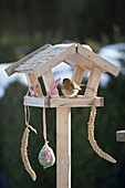 Kleines Vogelfutter-Haus mit Rotkehlchen (Erithacus rubecula)