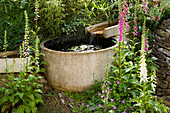 Water Feature: RILL DROPPING DOWN INTO A CIRCULAR Pool, with FOXGLOVES. WINGWELL NURSERY, Rutland