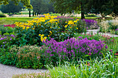 TRENTHAM GARDENS, Staffordshire: WOODLAND PLANTING IN EVENING Light by PIET OUDOLF. BORDER with Agastache AND INULA MAGNIFICA