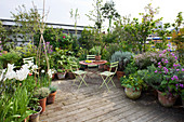 ROSE GRAY AND SCULPTOR DAVID MACILWAINE: VIEW LOOKING DOWN ONTO THE DECKED ROOF TERRACE / ROOF Garden with PLANTS IN CONTAINERS AND Metal TABLE with Green CHAIRS
