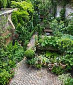 Garden of JOHN AND SUE MONKS, London