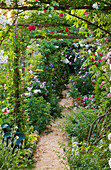 ANDRE EVE Garden, FRANCE - ROSE COVERED Pergola AND PATH