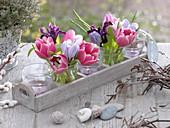 Kleine Sträuße aus Tulipa (Tulpen), Crocus (Krokussen) und Iris reticulata