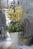 Vorfrühling auf der Terrasse