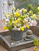 Weiß-gelber Frühlingsstrauß aus Prunus (Zierkirsche), Cornus mas