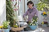 Frau bepflanzt blau-weiße Frühlingsschale 2/3