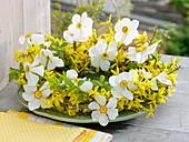 Weiß-gelber Frühlingskranz mit Narcissus poeticus