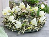 Kranz aus weißen Blüten : Tulipa (Tulpen) und Zweige von Prunus spinosa